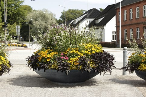 City Plantekumme